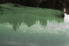 Groene dunne modder in een verontreinigde vijver Giftig die afval in het water wordt geworpen stock foto's