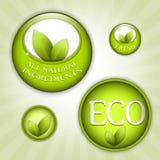 Groene eco natuurlijke kentekens Stock Foto