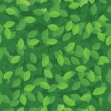 Groene eco verlaat naadloze achtergrond royalty-vrije illustratie