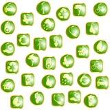 Groene ecoknopen van de hoog-Glans Stock Foto