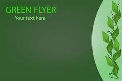 Groene ecologische achtergrond Stock Foto