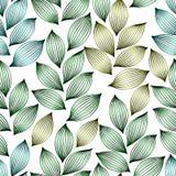 Groene elegante bladeren met aders naadloos patroon, vector stock illustratie