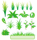 Groene elementen voor ontwerp.