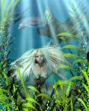Groene en Blauwe Meermin die door Zeewier turen Royalty-vrije Stock Afbeeldingen