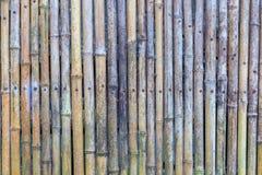 Groene en bruine Bamboeomheining Royalty-vrije Stock Fotografie