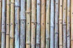 Groene en bruine Bamboeomheining Stock Afbeeldingen