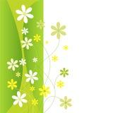 Groene en gele bloemen Stock Afbeelding