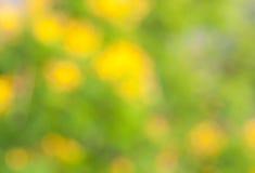 Groene en gele bluring achtergrond Stock Foto