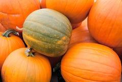 Groene en Oranje Pompoenen royalty-vrije stock foto