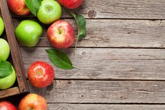 Groene en rode appelen royalty-vrije stock afbeelding