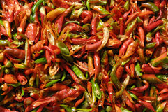 Groene en rode Spaanse pepers Stock Afbeeldingen