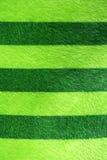 Groene en strokenhanddoek Stock Afbeeldingen