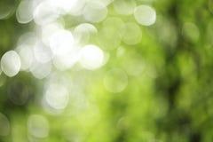 Groene en witte bokeh Stock Foto
