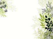 Groene en zwarte bloemenachtergrond als achtergrond vector illustratie