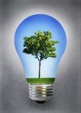 Groene energie Stock Fotografie