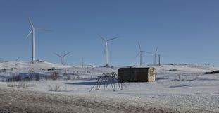 Groene energie royalty-vrije stock foto's