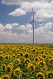 Groene energie - windturbine Stock Foto