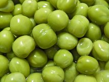 Groene erwt Stock Afbeelding