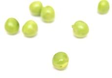 Groene erwt Stock Afbeeldingen