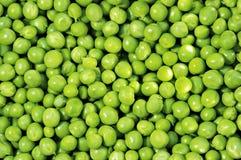 Groene erwten Royalty-vrije Stock Foto's