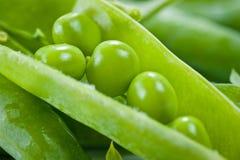 Groene erwten helder sappig en heerlijk geschoten close-up op een witte achtergrond royalty-vrije stock foto's