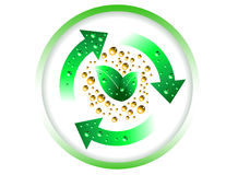 Groene Evolutie Stock Foto