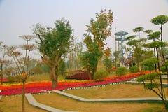 Groene Expo-Tuin in Zhengzhou Royalty-vrije Stock Foto