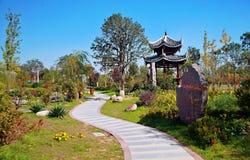 Groene Expo-Tuin in Zhengzhou Stock Afbeeldingen