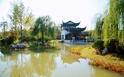 Groene Expo-Tuin in Zhengzhou Stock Foto