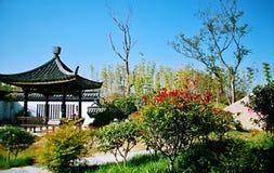 Groene Expo-Tuin in Zhengzhou Stock Foto's