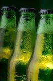 Groene flessen bier Stock Afbeelding