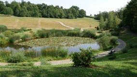 Groene Gazon en Bomen in een Vreedzaam Park stock videobeelden