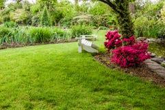 Groene gazon en struiken in een tuin Royalty-vrije Stock Afbeeldingen