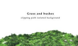 Groene geïsoleerd gras en struiken Stock Foto's
