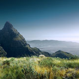 Groene Gebied en de Bergen van de hoge Resolutie het Mooie Zomer Royalty-vrije Stock Foto