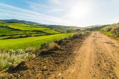 Groene gebied en landweg in Sardinige Royalty-vrije Stock Afbeelding