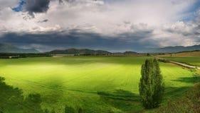 Groene gebied en onweerswolken royalty-vrije stock foto