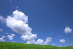 Groene gebied en wolk en blauwe hemel. Royalty-vrije Stock Afbeeldingen