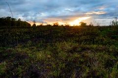Groene gebied en zonsondergang Stock Foto's