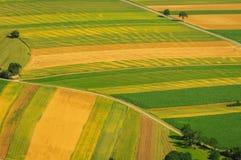 Groene gebieden luchtmening vóór oogst stock foto's