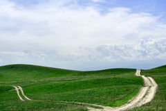 Groene gebiedsachtergrond Stock Fotografie
