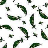 Groene gekleurde erwten Stock Illustratie