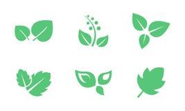 Groene geplaatste bladeren, blad van bomen en installaties vectorillustratie op een witte achtergrond stock illustratie