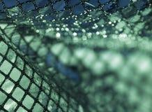 Groene glanzend sequined terug Stock Foto's