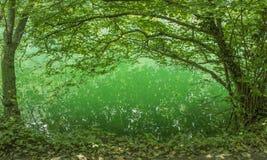Groene gloed op het water royalty-vrije stock fotografie