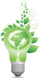 Groene gloeilamp Stock Afbeelding
