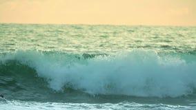 Groene Golf bij Zonsondergang Langzame Motie stock videobeelden