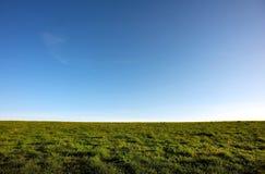 Groene gras blauwe hemel Royalty-vrije Stock Fotografie