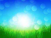 Groene gras blauwe hemel stock illustratie
