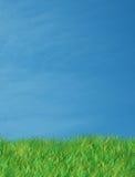 Groene gras blauwe hemel Royalty-vrije Stock Foto's